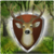 Wild Deer Hunt 2016 – Sniper app for free