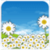 Daisy Flowers Live Wallpaper free app for free