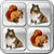 Animal Puzzle Memory For Kids icon