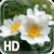 Nature LWP Free icon
