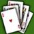 Poker Knights NIAP icon