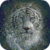 White Bengal Tiger Live Wallpaper app for free