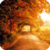 Beautiful Autumn Live Wallpaper HD icon