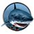 Piranha Shark Attacks app for free