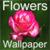 HD Flowers Wallpapers app for free