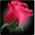 Count Your Roses to Decode Your Valentines Hidden  app for free