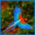 HD Bird Sounds icon