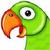 TalkingParots icon