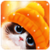 Cat and Owl Live Wallpaper icon