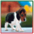 Cutest and Pretty Dogs app for free