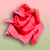 Origami Rose app for free