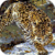 Leopard Hunting Live Wallpaper icon