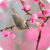 Beautiful Spring Live Wallpaper HD icon