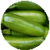 Benefits of Zucchinis icon