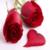Beautiful Roses Photos icon