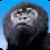 Monkey War 3D icon