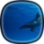 Dolphins LWP HD app for free