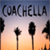 Coachella Festival Wallpapers app for free