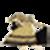 Anarkali dress suit pics icon