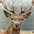Deer Hunter: 3D Sniper Shooter app for free