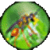 Weird Insects icon