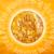 Gayatri Mantraa app for free