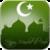Mawlid al-Nabi Wallpapers app app for free