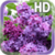 Flower Lilac Live Wallpaper app for free