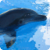 Dolphins : Ocean Wild Animals app for free