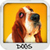 Dogs Wallpapers free icon