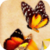 Colorful Butterflies Live Wallpaper icon