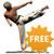 Taekwondo Forms free icon