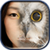 Animal Face Changer app for free