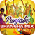 Punjabi Bhangra Mix app for free
