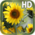 Sunflower Live Wallpaper HD app for free