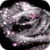 Gorgeous Grey Rose Live Wallpaper app for free