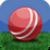 Yahoo! Cricket Scores icon