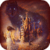 The Beauty and the Beast Live Wallpaper app for free