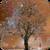 Wonderful Snow Live Wallpaper app for free