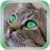 Cat Star Live Wallpaper app for free