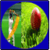 Cricket Player in the World app for free