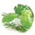 Benefits of Herbs icon