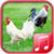 Chicken sounds app app for free