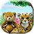 Teddy Hide n Seek app for free