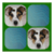 Mour Apps Animal Memory icon