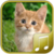 Cats sounds app icon