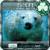 iPhone Polar Bear GoLocker XY app for free