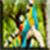 Birds Images App icon