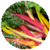 Benefits of Swiss Chard app for free