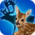 Animal Baby Quiz app for free
